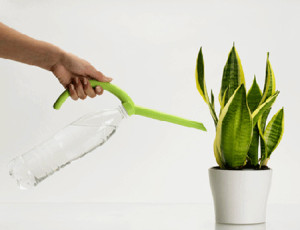 annaffiare-le-piante-in-vaso