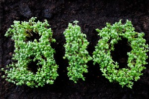 BIO written with herbage